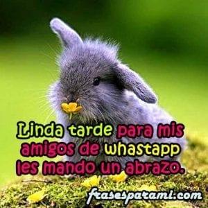 buenas-tardes-facebook