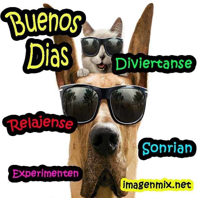 Buenos Días Imágenes Saludos Frases De Buenos Días Bonitas