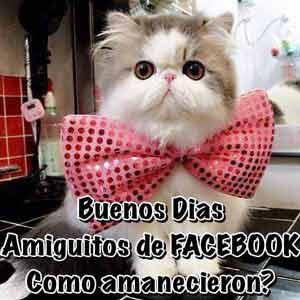 buenos días facebook