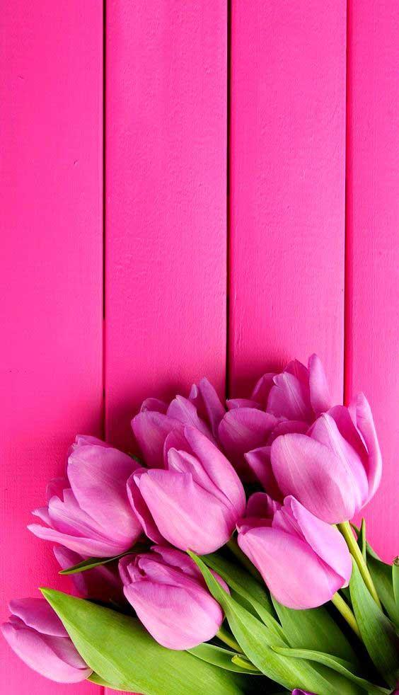 fondos de pantalla de flores