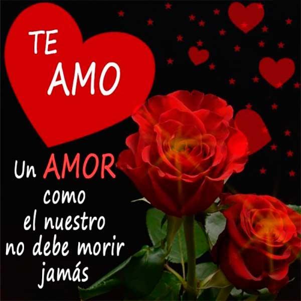 Frases Para Enamorar Imagenes De Amor Para Enamorar