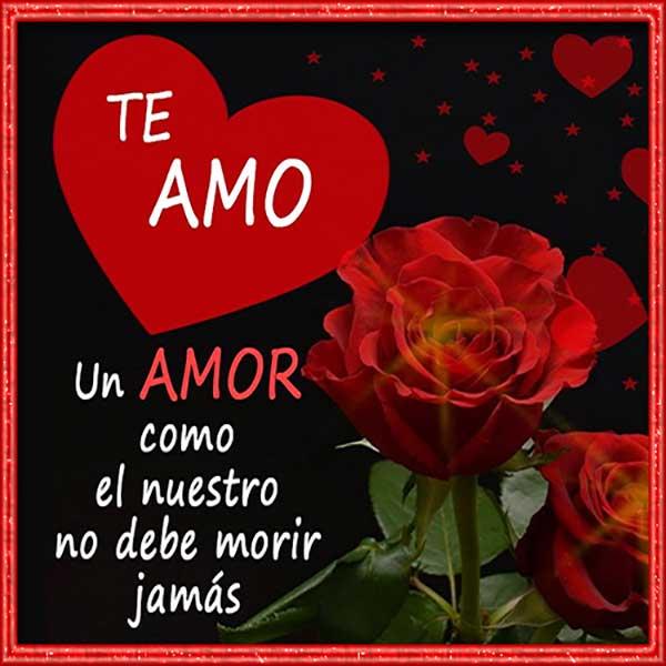 Te Amo Imagenes Postales Y Frases Bonitas Para Decir Te Amo
