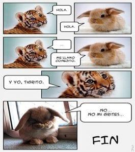 chistes cortos de animales