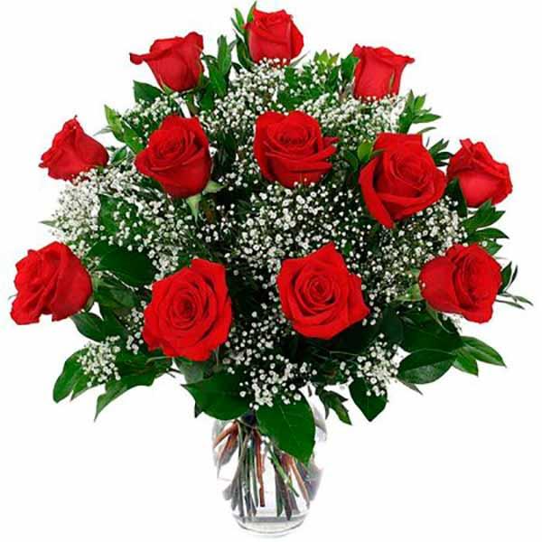 imágenes de rosas rojas