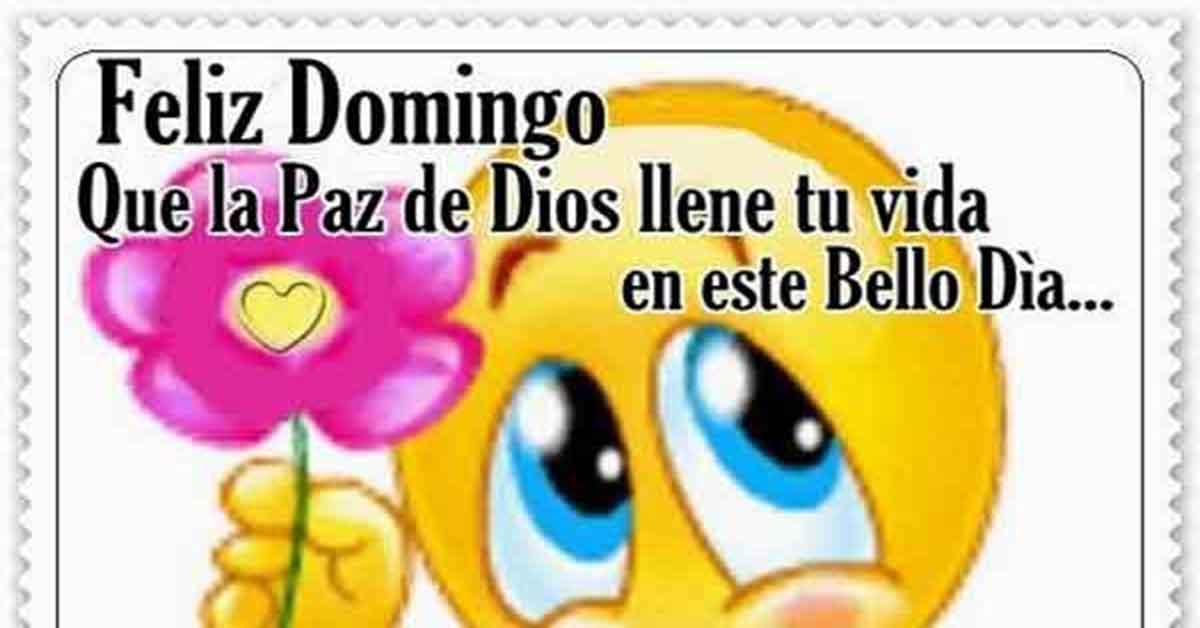 Imagens E Frases De Domingo: Feliz Domingo 🥇【Imágenes Y Frases FELIZ DOMINGO】