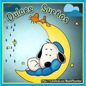 imagenes de dulces sueños hasta mañana