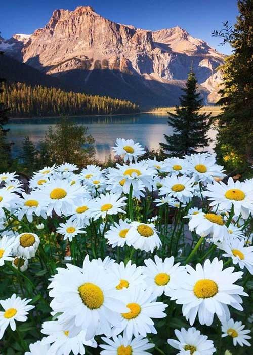 imagenes bonitas de paisajes naturales