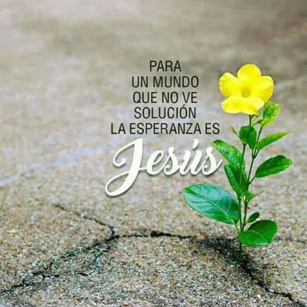frases de esperanza en dios