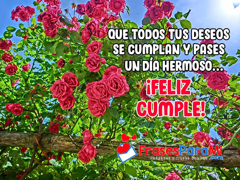 imagenes de rosas bonitas con mensajes para felicitar cumpleaños