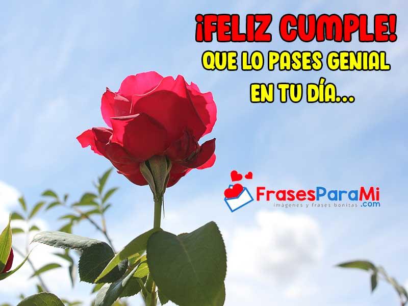imagenes de rosas con frases de cumpleaños