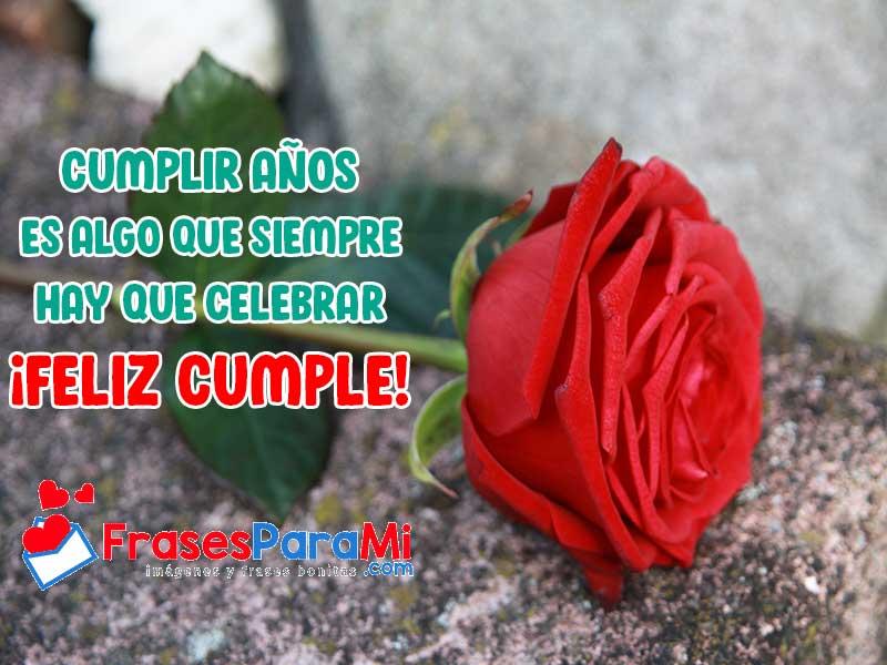 imagenes de rosas de cumpleaños para whatsapp