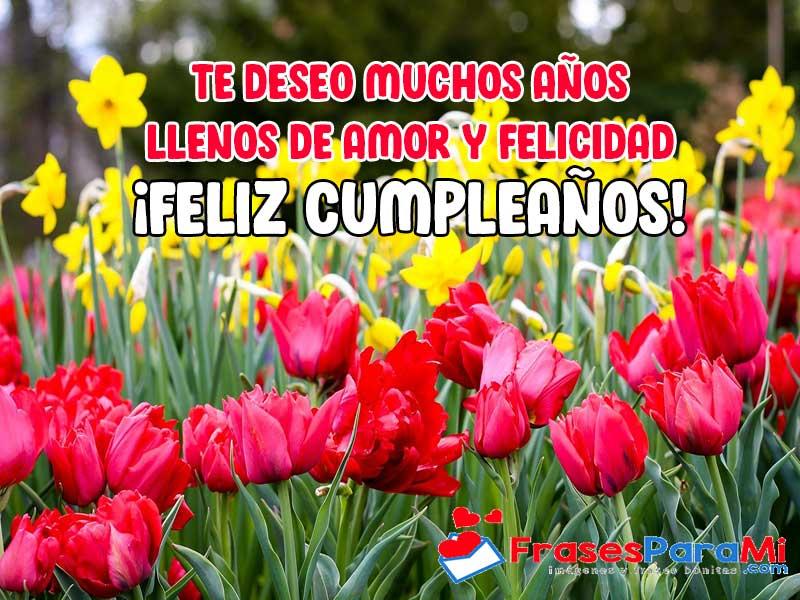 imagenes de rosas hermosas con frases de feliz cumpleaños gratis